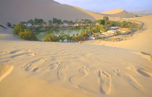 Soñar con desierto 5